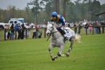 #Stoneybrook, #Steeplechase, #Carolina Horse Park, #horse, #North Carolina, #Raeford