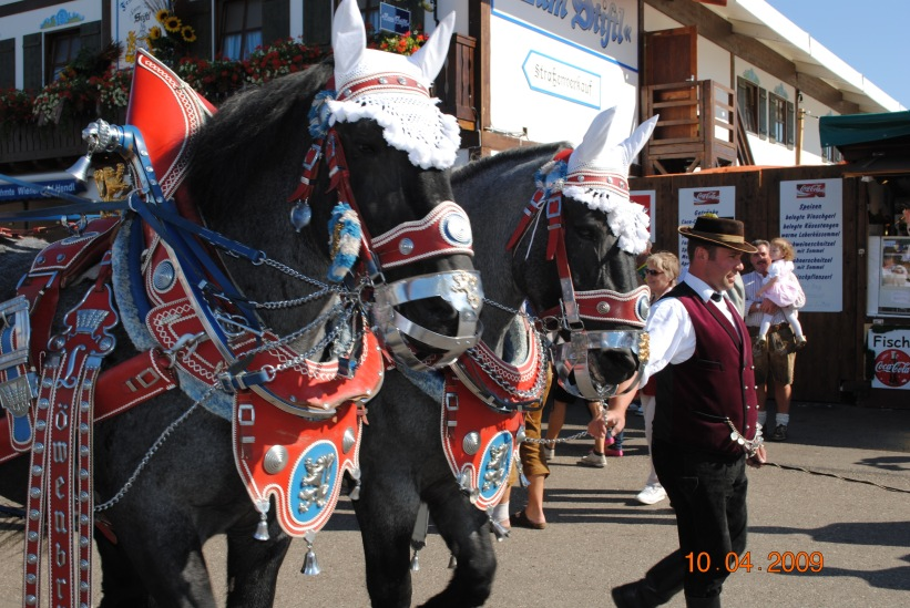 #Oktoberfest, #Germany, #Munich, #horses, #festival, #parade, #brewery