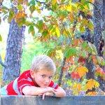 park, Fall, pinehurst, north carolina