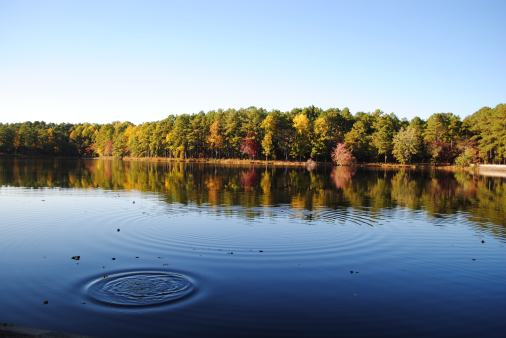 lake, Autumn, November, Fall, nature, Southern Pines