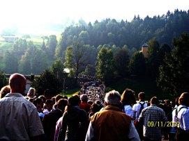 travel photographer, bondgirlphotos, Cattle drive, Bavaria, Germany