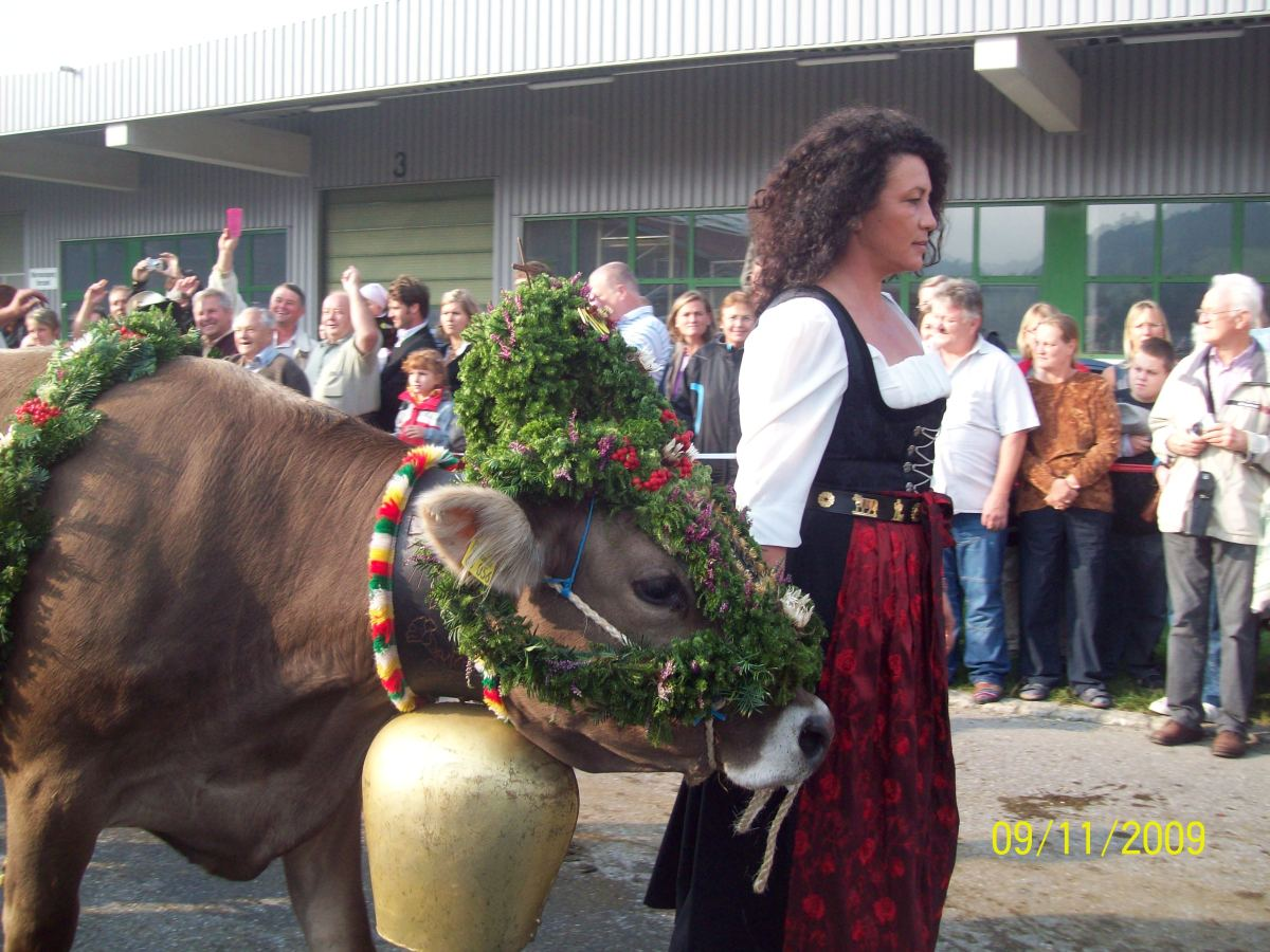 Party Til the Cows Come Home | Viehscheid | Bavaria, Germany