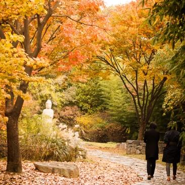 Seoul, Korea, Asia, Hangul Park, National Museum