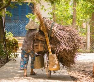 Mekong, Vietnam, island,