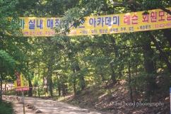 Yongma Land, Seoul