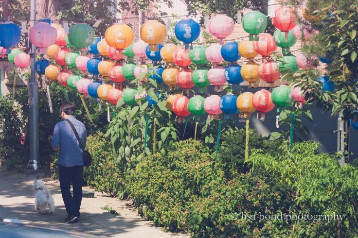 Yongma temple, lanterns, Seoul, Korea