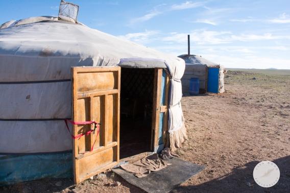 ger, yurt, mongolia, nomadic, herdsmen