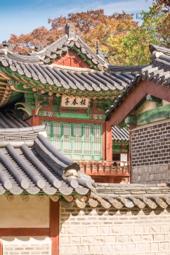 seoul, palace, autumn, south korea