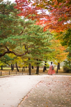 palace, seoul, hanbok, autumn, south korea