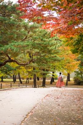 palace, seoul, hanbok, autumn, south korea