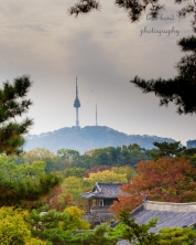 seoul, tower, autumn, Namsan
