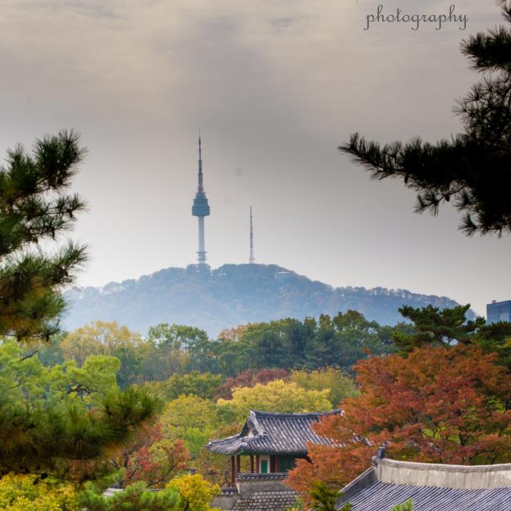 seoul, tower, autumn, Namsan