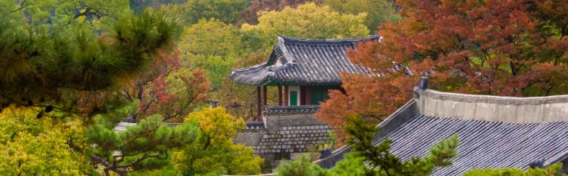 seoul, autumn, korea