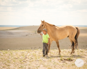 ger, Mongolia, nomadic, Gobi, desert,
