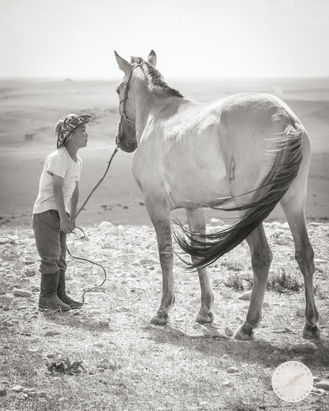 Mongolian, boy, horse, Gobi, desert